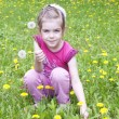 Royalty-Free Stock Photo: Young girl in a field of dandelions