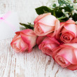 Blank card for your message and pink roses — Stockfoto