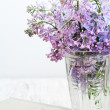 Bouquet of a lilac — Stock Photo