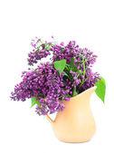 Bouquet di un lilla — Foto Stock