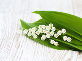 Bouquet lilies of the valley — Stock Photo