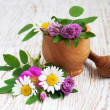 Wild flowers and herbs — Stock Photo #25851121