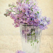 Stock Photo: Bouquet of a lilac