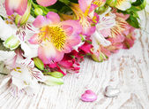 Bouquet of alstroemeria flowers — Stockfoto