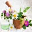 Wild flowers and herbs — Stock Photo #26159383