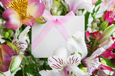 Alstremeria kwiaty białe karty — Zdjęcie stockowe