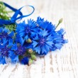 Cornflower — Stock Photo #27242371