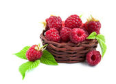 Fresh raspberries in the basket — Stock Photo