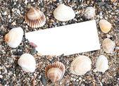 Papel em branco sobre a areia da praia — Fotografia Stock