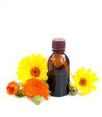 Herbal medicine — Photo