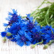 Cornflower — Stock Photo #29207595