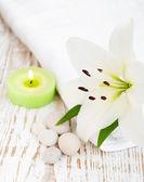 Lázně s lily — Stock fotografie