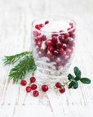 Cranberries in sugar — Stock Photo