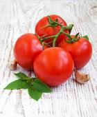 Tomatoes, basil and garlic — Stock Photo