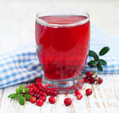 Fruit cranberries drink — Stock Photo