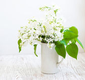 Bouquet of a white lilac — Stock Photo