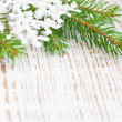Christmas border with pine tree — Stock Photo