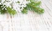 松の木とクリスマスの国境 — ストック写真