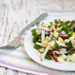 Spring salad with radishes — Stock Photo