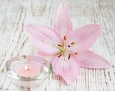 Bougie et fleur de lys — Photo
