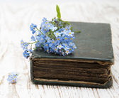 Forget-me-nots flowers and old book — Stock Photo