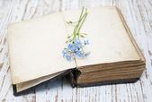 Velho livro — Foto Stock