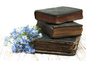 Forget-me-nots flowers and old books — Stok fotoğraf