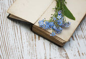 Forget-me-nots flowers and old book — Stok fotoğraf