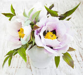 Peony Flower with Green Leaves — Stock Photo