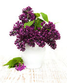 Summer lilac flowers in vase — Stock Photo