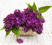 Summer lilac flowers in basket — Stock Photo