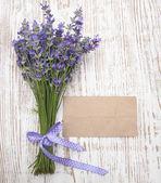 Lavender on vintage wood — Stock Photo