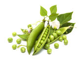 Fresh Garden Peas — Stock Photo
