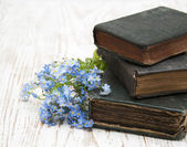 Forget-me-nots flowers and old books — Stock Photo