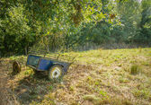 Vintage wagon in the field — Photo
