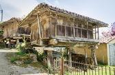 "Granary of Asturias raised by pillars and known as ""horreo"" — Stock Photo"