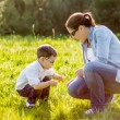 Mother and son picking flowers in a field — Stock Photo
