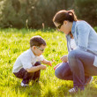 Stock Photo: Mother and son picking flowers in a field