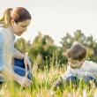 Pregnant mother and son picking flowers in a field — Stock Photo #24479809