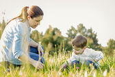 Pregnant mother and son picking flowers in a field — Stock Photo