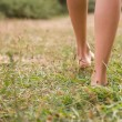 Young female legs walking on the grass — Stock Photo #33589985