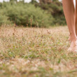 Young female legs walking on grass — Stock Photo #41335891