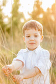Kid in field playing with spikes at summer sunset — Stock Photo