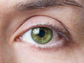 Closeup of female natural green eye without makeup — Stock Photo