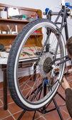 Real bicycle mechanic repairing custom fixie bike — Stock Photo