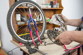 Hands of bicycle mechanic cleaning chainring bike — Stockfoto
