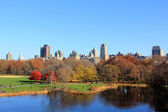 Central Park landscape in the New York city — Foto de Stock