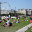 Stok fotoğraf: People relaxing in grass near Panoramic Ferris wheel and Louvre museum in Paris