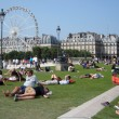 Foto Stock: People relaxing in grass near Panoramic Ferris wheel and Louvre museum in Paris