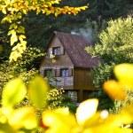 Wooden hut — Stock Photo #12812426